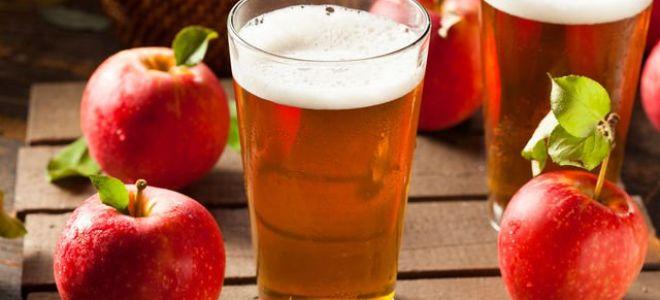 яблочный сидр рецепт приготовления в домашних условиях