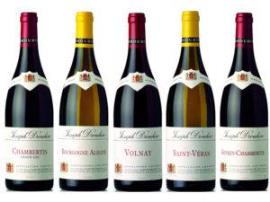 Бургундское вино1