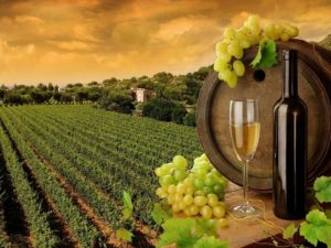 История грузинского вина