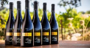 вино нуар1